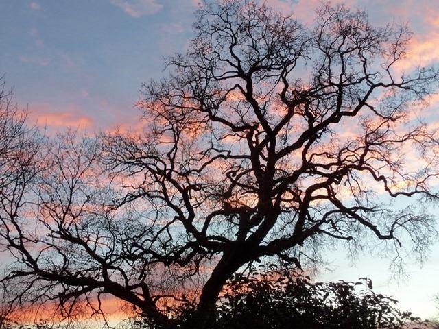 lever de soleil LOT hiver