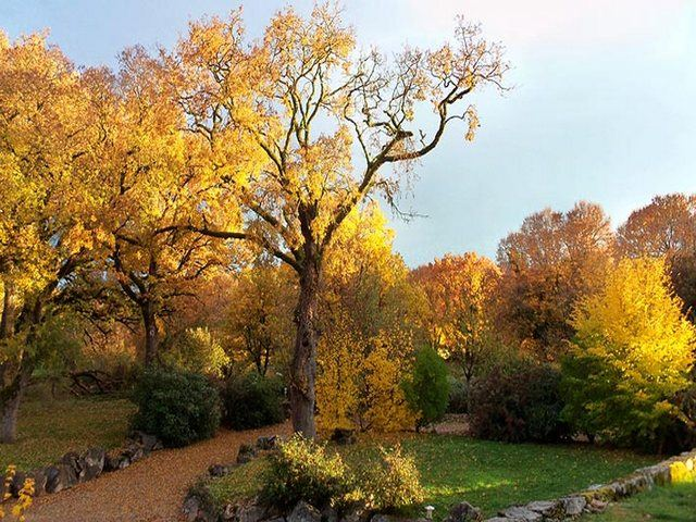 saison automne lot quercy