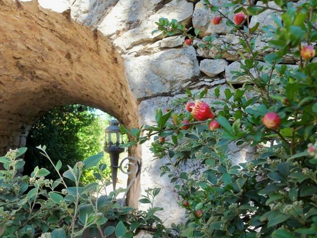 fleurs parc maison d'hôtes Chambres et Jardin de Pierres