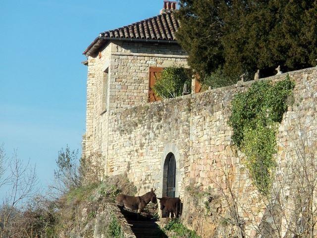 porte d'entrée village fortifié Uxellodunum