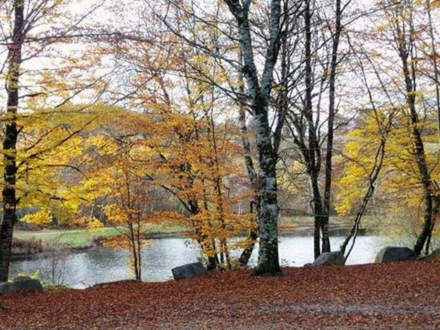 Lac lotois le lac du tolerme